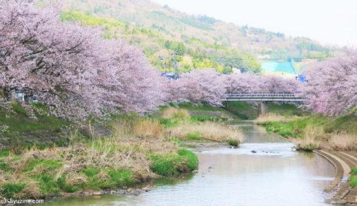 川沿いに桜スポットが多いワケ